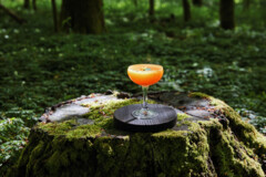 The Drinkable Country